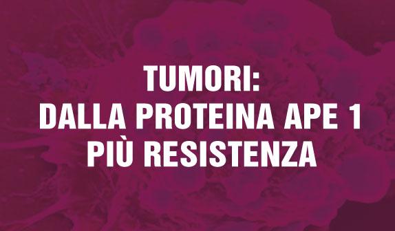 Dalla proteina Ape 1 più resistenza nei tumori: ora possibile studiare nuovi farmaci
