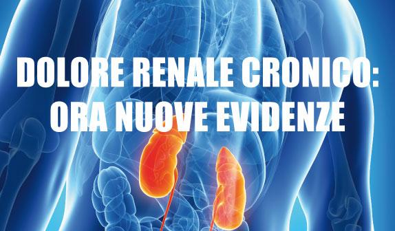 Dolore renale cronico: ora nuove evidenze