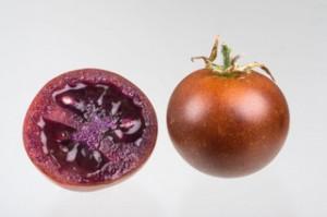 pomodoro bronzeo cnr infiammazioni intestinali polifenoli