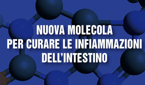 Nuova molecola per curare le infiammazioni dell'intestino