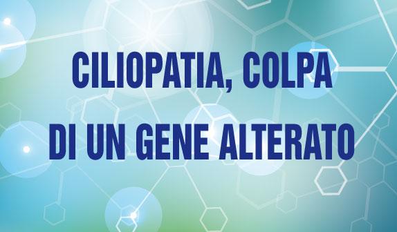 Ciliopatia, colpa di un gene alterato